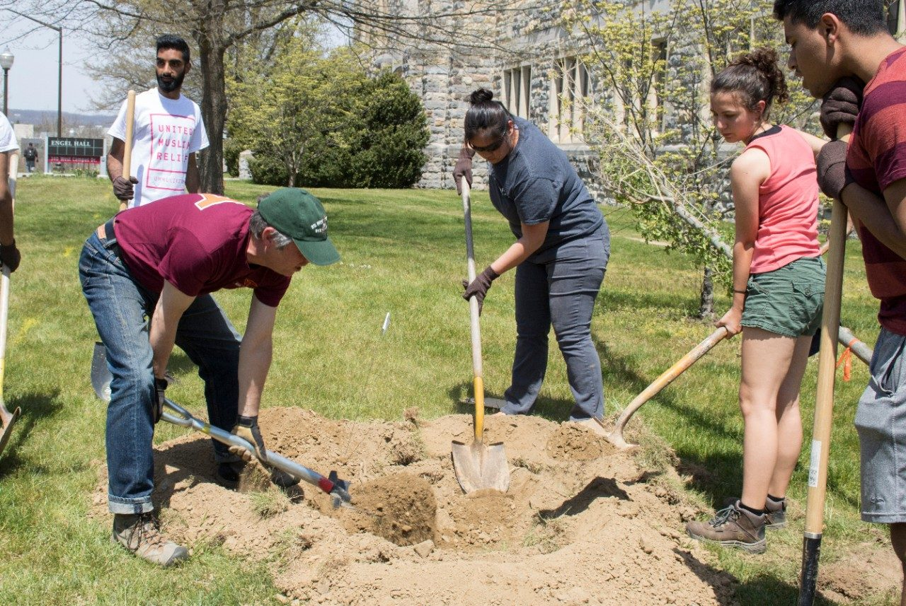 Employees and students work together to dig a hole for planting a new tree.